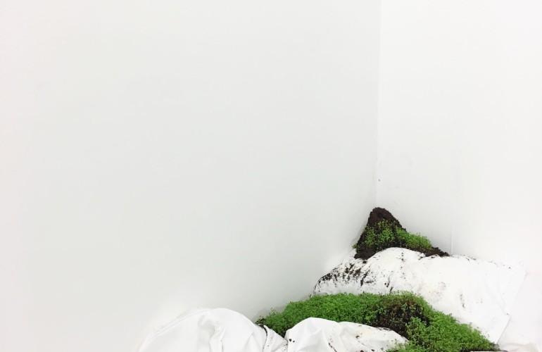 white bed installation